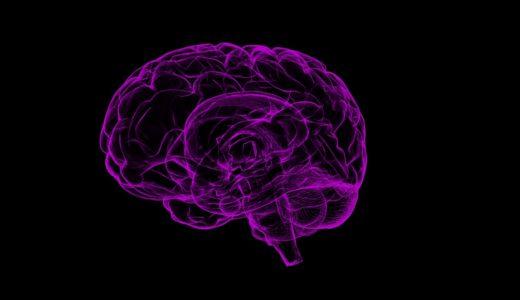 この世界で唯一自分にしか意志がない理由「メモリーと意志統合論」